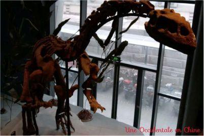 ob_34ec31_squelette-dinosaure