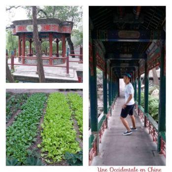 ob_5bc9bd_jardins-2