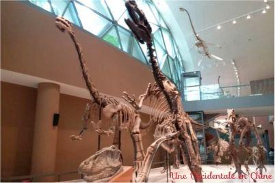 ob_7b83db_dinosaures-3