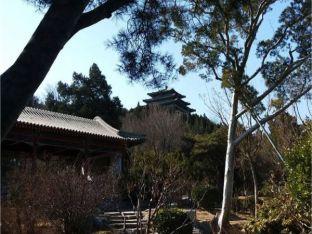 ob_94b7ce_jardin-jingshan