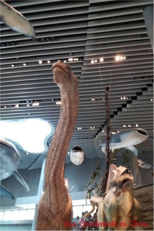 ob_c67991_dinosaure-2