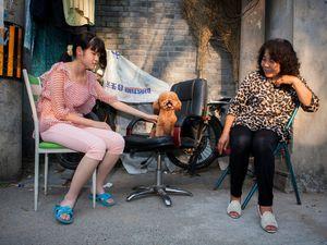 ob_cab5b0_08witchina-poodle-web-master768