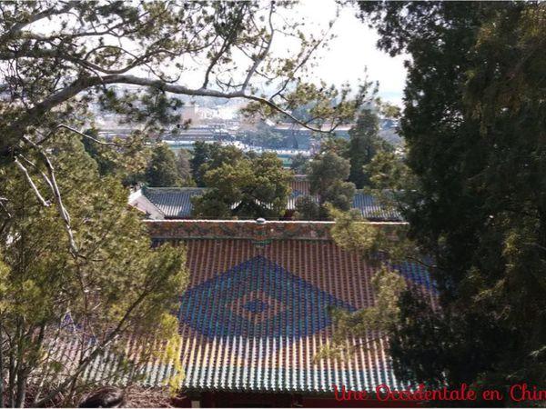 ob_da8f45_yong-an-temple