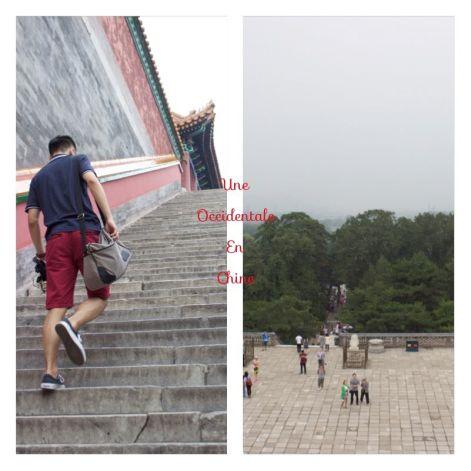 ob_faeac0_marche-yiheyuan